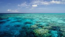 The Extraordinary Resilience Of Great Barrier Reef Corals, And Problems With Policy Science